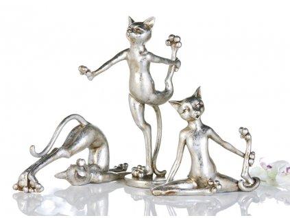 Kočka - Aerobic
