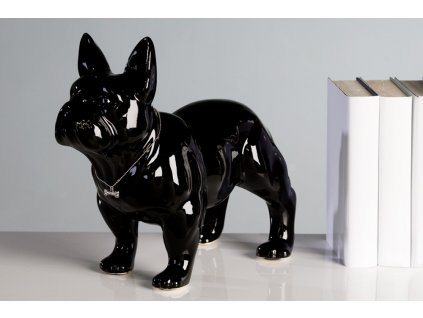 Pes buldog