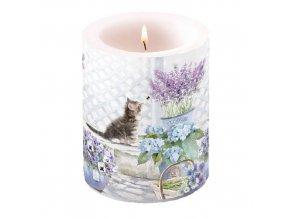Svíčka dvouplášťová Kitten