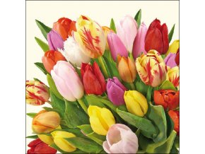 Napkin 33 Colourful Tulips