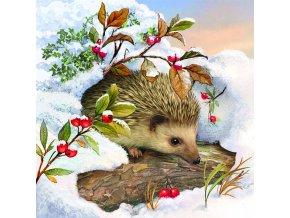 Ubrousky 33 Hedgehog In Snow