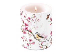 Svíčka dvouplášťová Bird & Blossom White